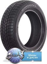 Tigar Winter 1 175/65R14  82T